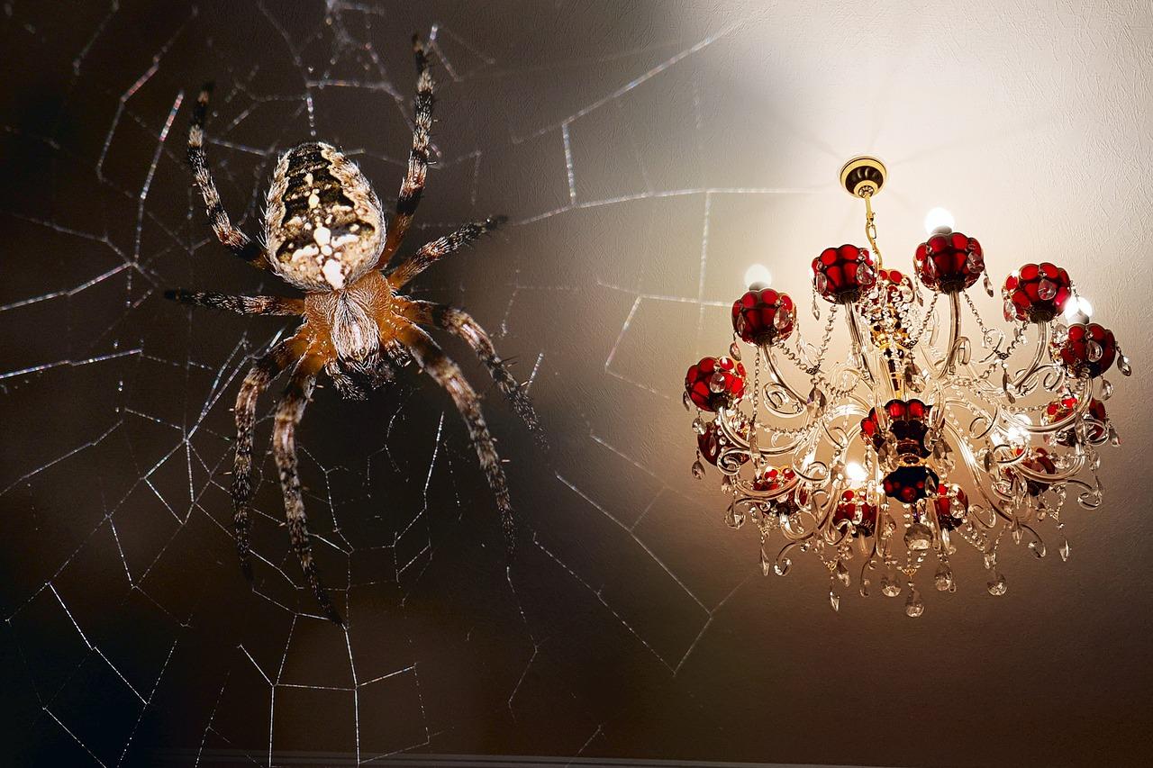 lustre araignée